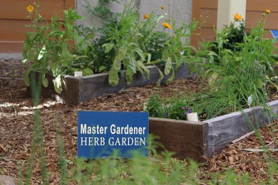 we recently visited the herb garden at the cooperative extension botanical gardens and took a tour of the many different varieties of herbs grown as a - Herb Garden Ideas